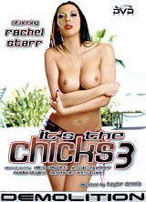 Its The Chicks #3 front cover